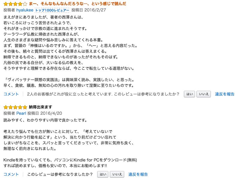 nishi_rev3 2